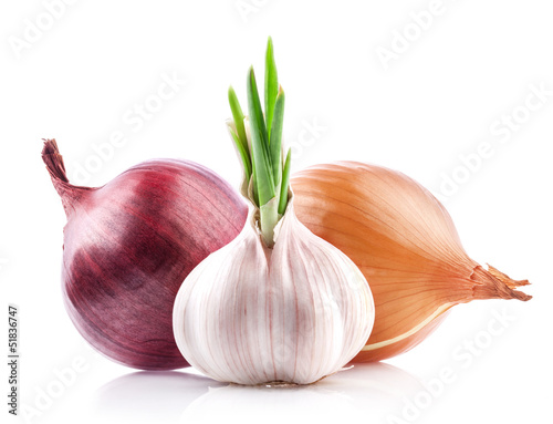 Garlic and onion isolated on white background
