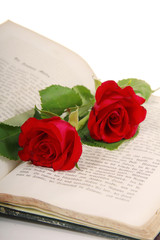 Antikes Buch mit Rosen - Book with roses