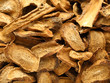 Herbal , dry burdock root