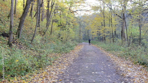 man sportsman athlete run beautiful autumn park road healthy