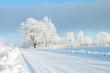 Leinwandbild Motiv Empty snow covered road in winter