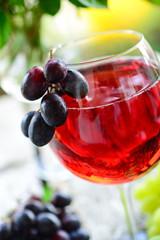 Rote Weinschorle - Sommergenuss