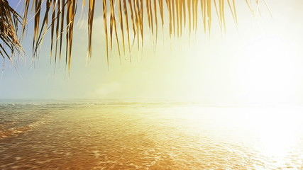 Spectacular tropical beach stock footage