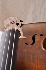 Detail of a violoncello isolated on beige background