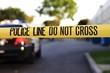 Crime Scene - 51856167