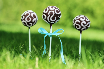 Chocolate cake pops on fresh green grass in a beautiful garden.