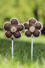 Chocolate cake pops in flower shape, lavishly decorated with spr