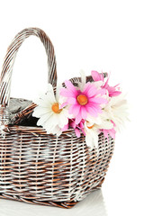 Picnic basket with flowers, isolated on white