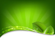 Green Background With Sunburst And Leaf