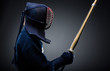 Profile of kendo fighter with bokuto
