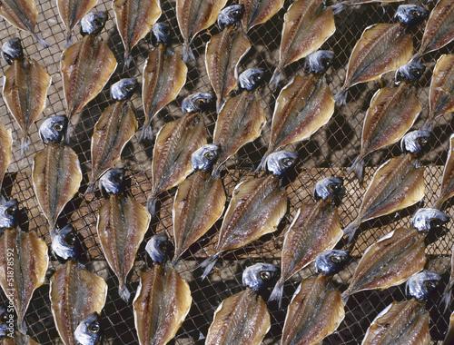 Drying stockfish