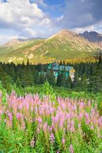 Doliny Gąsienicowej w Tatrach, Polska