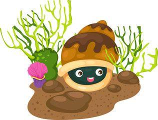 illustration coral and shells vector
