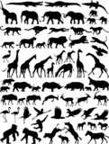 African wild animals vector silhouette