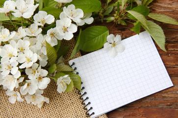 die Frühlingsnotizen