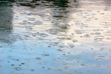 rain drops in a puddle with some reflections