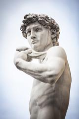 Busto del David di Michelangelo