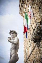 David di Michelangelo a Firenze