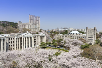 Kyung Hee University, Seoul, Korea