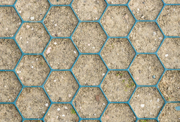 Honeycomb Pattern on Ground