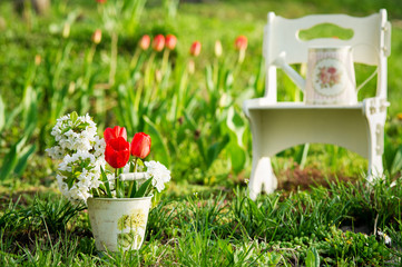 Garden view with utensils and red tulips