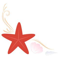 sfondo stella marina