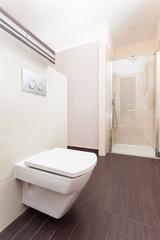 Grand design - modern toilet
