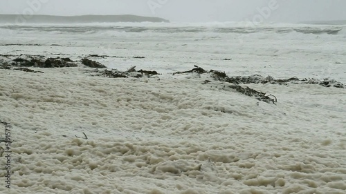 Storm on falkland island, beach full of froth