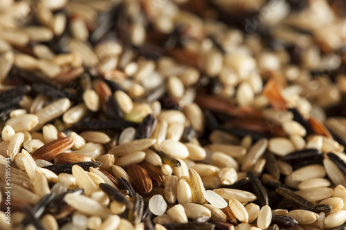 Organic Dry Multi Grain Rice