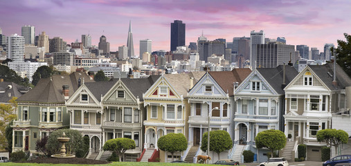 San Franciso Skyline and the Painted Ladies