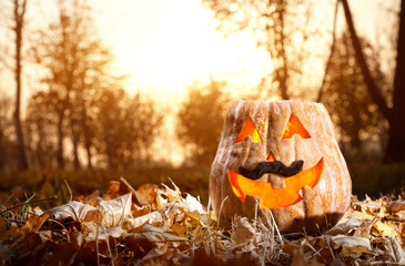 Funny Halloween pumpkin in the forest