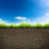 Fototapety grass