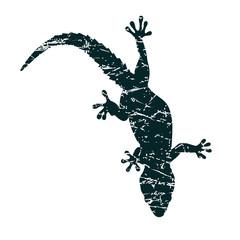 Lizard with grunge texture