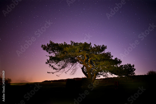 Star Light Tree