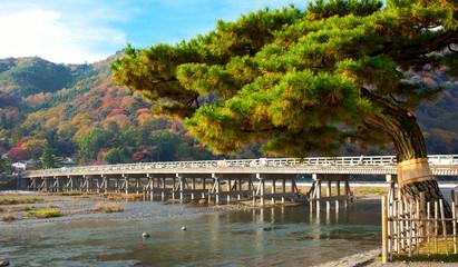 Landscape Kyoto