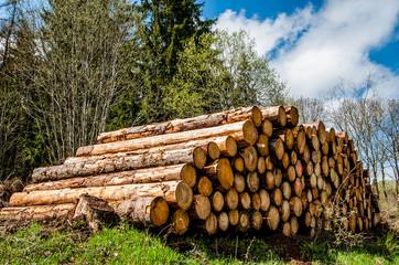 billes de bois au bord du chemin