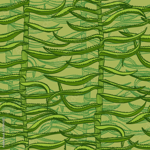 Seamless green hand drawn background with aloe vera plants