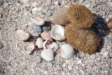 Sassi in spiaggia