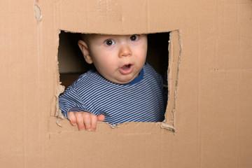 staunendes Kleinkind schaut aus Fenster