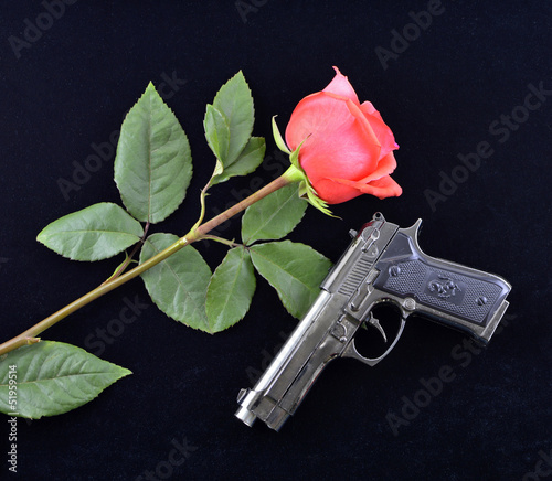 Gun and rose on black velvet