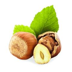 Hazelnuts isolated