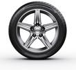 Leinwanddruck Bild - Car tire