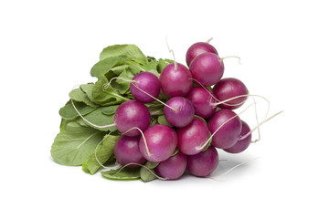 Bunch of purple Radish