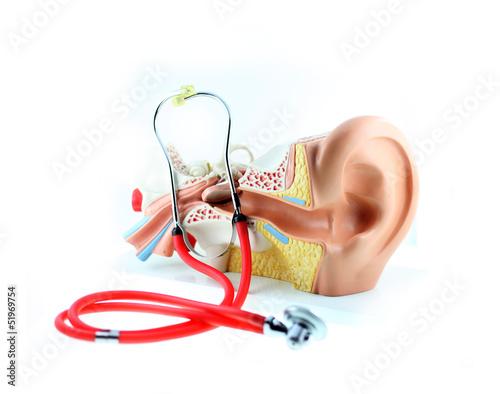 HNO-Modell und Stetoskop