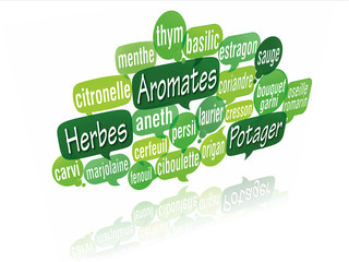 nuage de mots bulles 3d : aromates