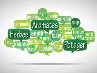 nuage de mots bulles : aromates