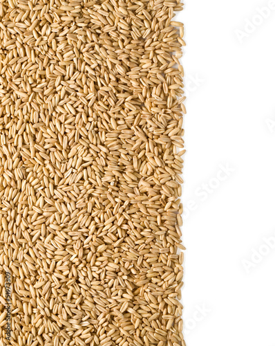 rye background