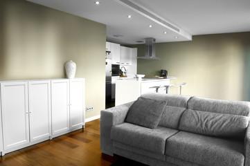 kitchen and sofa