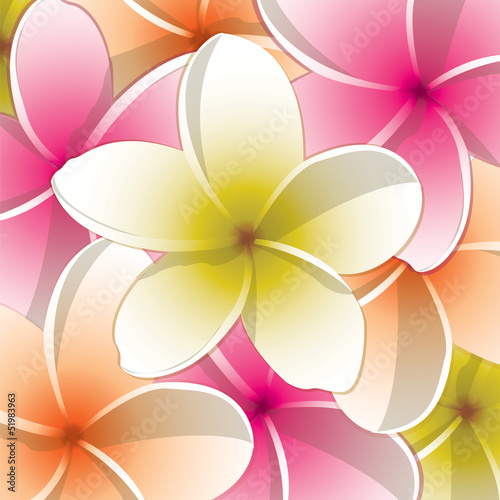 All occasion frangipani card in vector format.