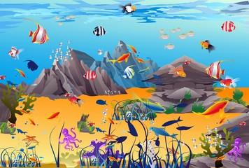 podwodny świat,